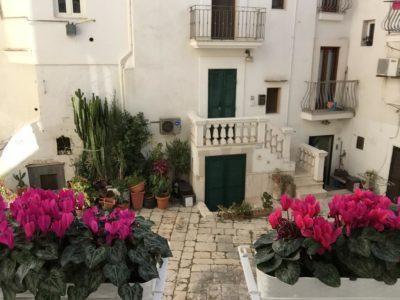 Vista Casa Vacanze Monopoli - Margherita - Casa dei Fiori - My Monopoli